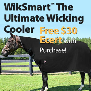 WikSmart™ The Ultimate Wicking Cooler