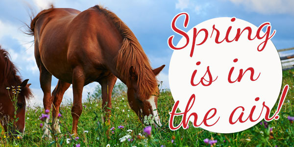 A Spring Thing… 25% Off or 30% Off Orders over $129*