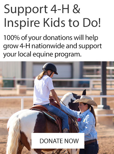 Support 4-H Youth & Inspire Kids to Do! Donate Now