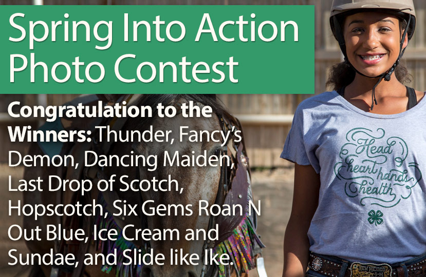 Spring Into Action Photo Contest!