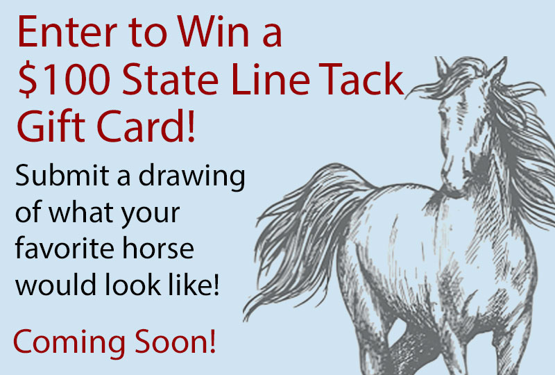Enter to Win a $100 State Line Tack Gift Card! Enter Now