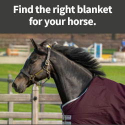 Find the right blanket for your horse