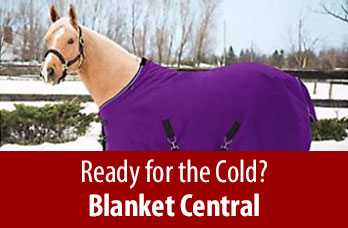 Ready for the Cold? Blanket Central