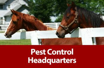 Pest Control Headquarters