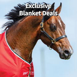 Exclusive blanket deals