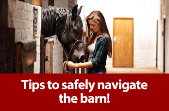 Tips to safely navigate the barn!