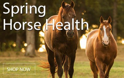 Start your season out right by addressing horse health! Our selections of dewormers and vaccines will keep your horse healthy and feeling his best. Shop Now!