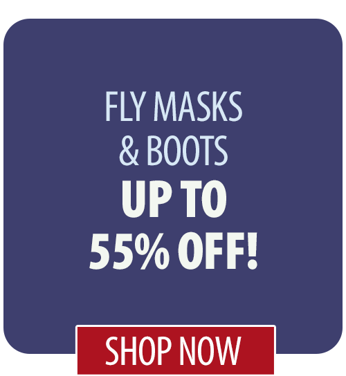 Up to 55% off Fly Masks & Boots