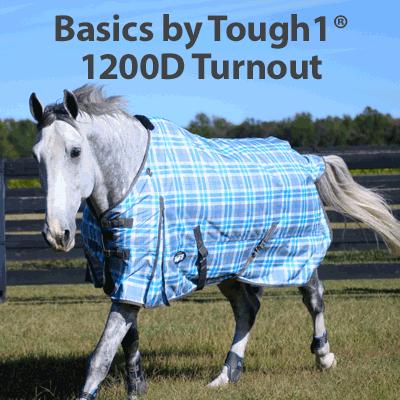 Basics by Tough1� 1200D Turnout