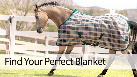 Find Your Perfect Blanket