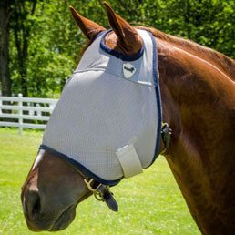 fly masks and boots