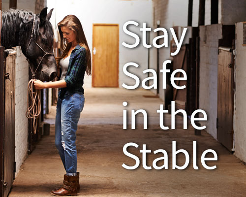 Stay Safe in the Stable