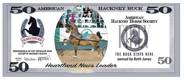 hackney bucks