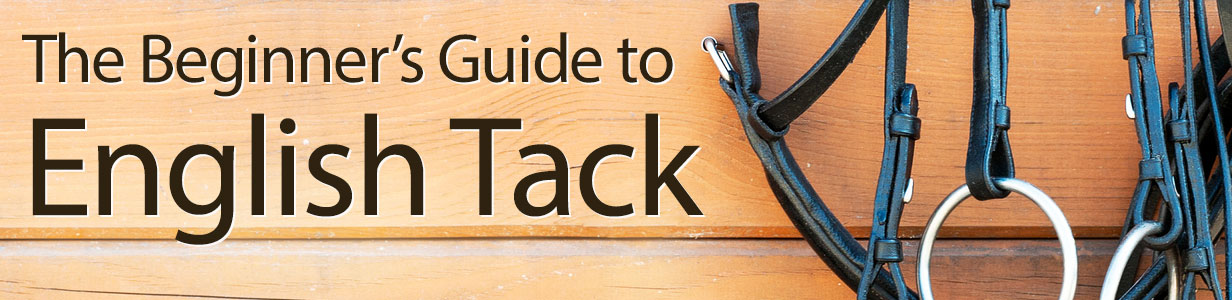 The Beginner's Guide to English Tack