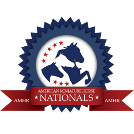 AMHR Nationals