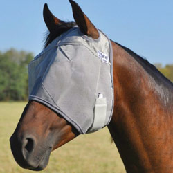 Fly Masks & Fly Boots