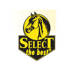 Select the Best logo