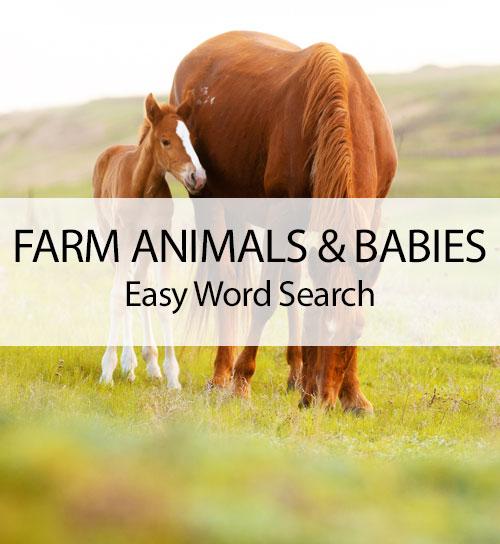 Farm Animals & Babies - Easy Word Search