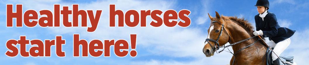 Healthy horses start here!!
