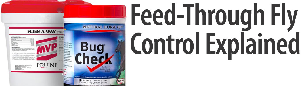 Is Fly Control Feed Through Right For You?