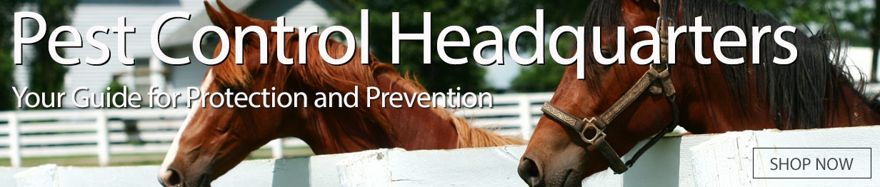 Pest Control Headquarters - Your Guide for Protection and Prevention - Shop Now
