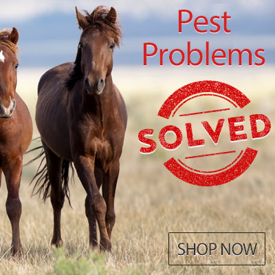 Pest Problems Solved - Shop Now