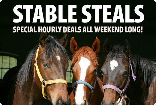 Stable Steals