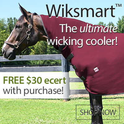 Wiksmart The Ultimate Cooler - Shop Now