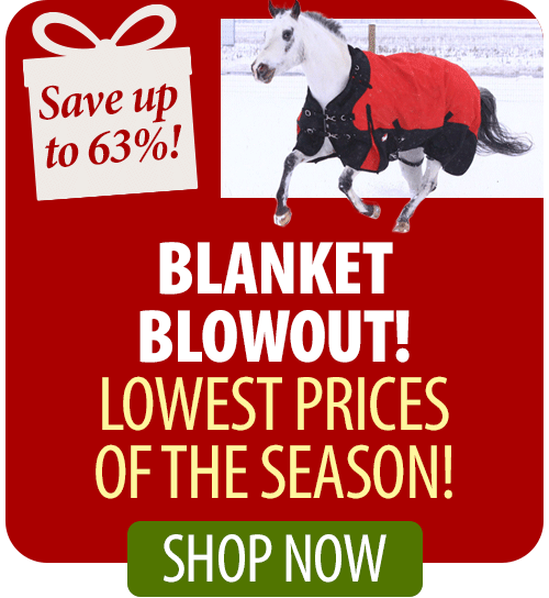 Shop Blanket Blowout!