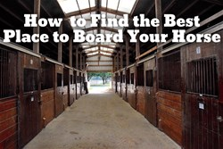 Thumbnail How to Find the Best Place to Board Your Horse
